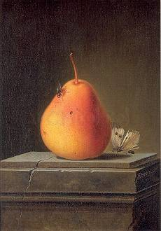 Still-life with Pear and Insects